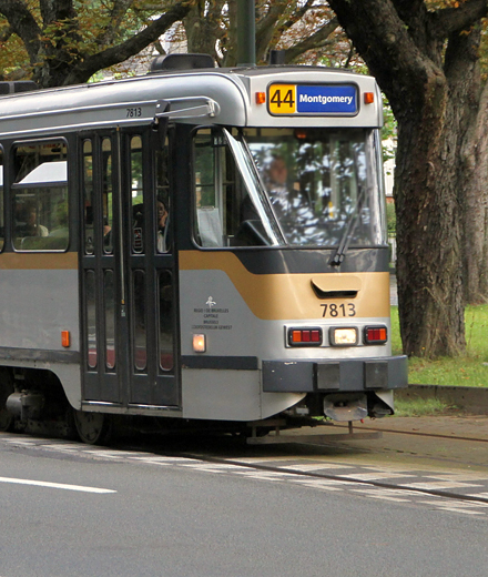 Tram 44 – Elagage à Tervuren