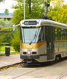 Tram 81, bus 46-49 – Lentefeest